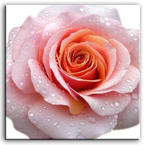 Natiurmortai/Gėlės