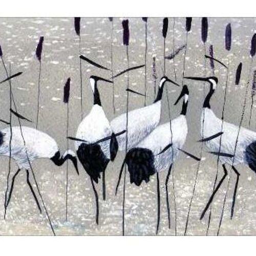 Gyvūnai/Paukščiai